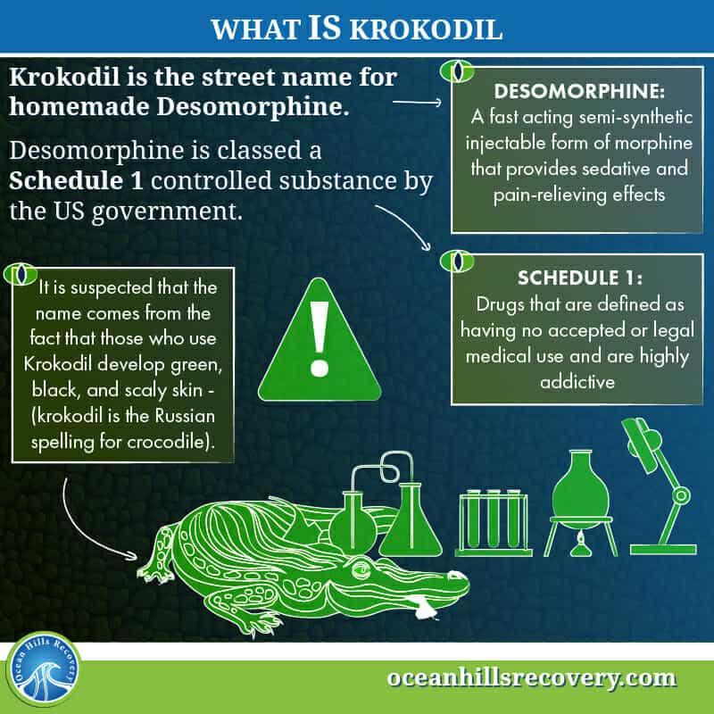 What is Krokodil?
